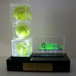 Troféu Taroii Open de Tênis